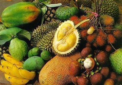 ekzoticheskie fruktyi tailanda Экзотические фрукты Таиланда